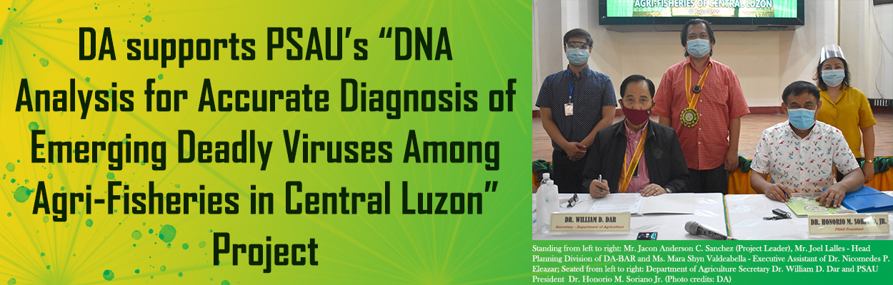 DA supports PSAU's DNA analysis for accurate diagnosis of emerging deadly viruses among agri-fisheries in Central Luzon