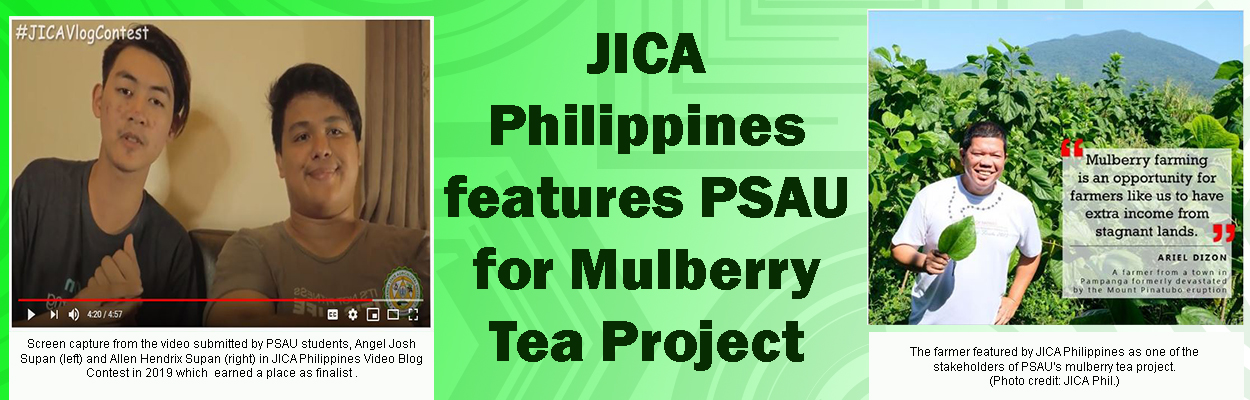 JICA Philippines Features Psau for Mulberry Tea Project