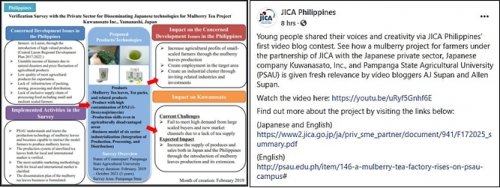 At left is a script of the verification survey with the private sector for disseminating Japanese technologies for mulberry tea project between PSAU and Kuwanosato, Inc. At right contains the links made by JICA Philippines where readers can view the full video entry of PSAU students and the mulberry article from the PSAU website.